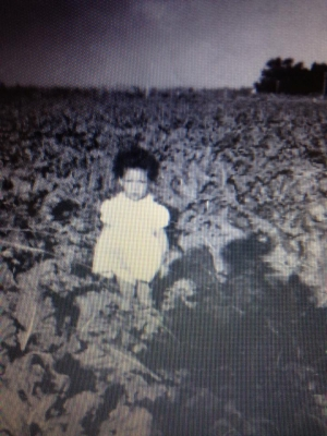 Cousin Esther Jean Silvas,in the Western Sugar Beet Fields in Sterling,Colorado,playing in the Beet Fields,while her Mom